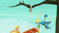 Smolder and Gallus lose control of the roof S8E9