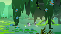 Zecora falls into the swamp water S7E20