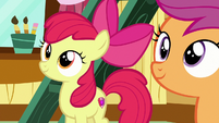 Apple Bloom and Scootaloo look at wall of helped ponies S7E6