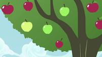 Apple tree shaken S4E13