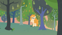 Pear Butter finding a cute scene S7E13
