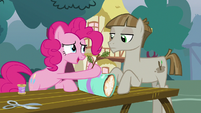 """Pinkie Pie """"still want to plan it together"""" S8E3"""