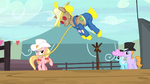 Ponies watching roping contest S5E6.png