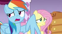 "Rainbow Dash ""maybe...?"" S7E19"