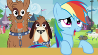 Rainbow Dash and orthros drooling S4E22