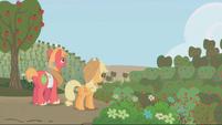 S01E04 Applejack i Big Mac patrzą na akry