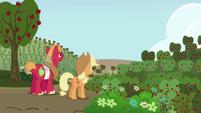 S01E04 Big Macintosh i Applejack patrzący na sad