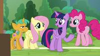"Twilight ""I asked Rainbow Dash to help"" S9E15"