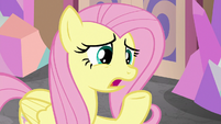 "Fluttershy ""those guidelines aren't working"" S8E1"