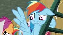 Rainbow Dash nervously bites her hoof S8E20