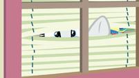 Rarity peering through window blinds S9E19