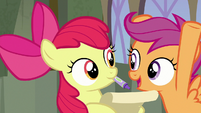"""Scootaloo """"did I mention the flying thing?!"""" S8E6"""