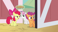 "Apple Bloom ""he ain't here"" S9E23"