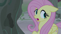 """Fluttershy """"find out what happened here"""" S7E25"""