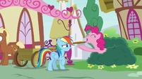Pinkie Pie gives Rainbow Dash a custard pie S7E23