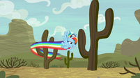 Rainbow Dash swerving around cacti S9E6
