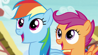 Rainbow and Scootaloo watch Spitfire's landing S6E7