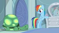 Rainbow looks at Tank sleeping S5E5