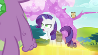 Rarity -what did you say-- S4E23