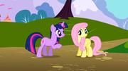 S01E01 Twilight próbuje zapoznać się z Fluttershy.png