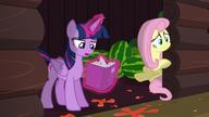 S05E23 Fluttershy i Twilight w spiżarni