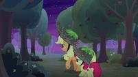 AJ and Apple Bloom explore the orchard S9E10