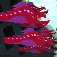 Quarray eels