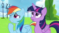 Twilight Sparkle and Rainbow Dash wincing S6E24