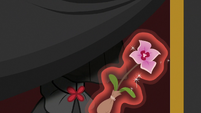 Empress Sable Spirit taking the colt's flower S7E16