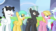 Pegasi 'Yes, ma'am' 4
