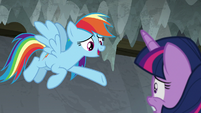 """Rainbow """"should've seen how excited"""" S8E7"""