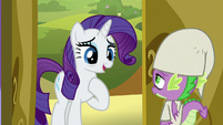"""Rarity """"I hadn't counted on"""" S9E19"""