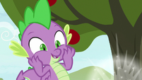 Spike looking at something shiny S9E23