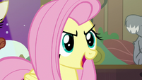 "Fluttershy ""solve this once and for all!"" S7E5"