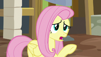 Fluttershy -it's, uh, not ready- S7E5