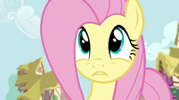 Fluttershy tries to get the attention of Twilight and RD for 2nd time S4E21