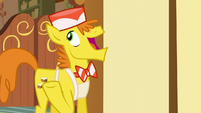 Mr. Cake -to be my backup delivery pony- S5E19