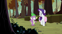"""Rarity """"a few of their feathers"""" S8E11"""