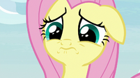 Angel really worried about Fluttershy S9E18