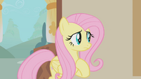 Fluttershy is confused S1E10