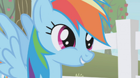 "Rainbow Dash ""don't you see, Twilight?"" S1E03"