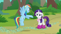 """Rainbow Dash """"the book you just read!"""" S8E17"""