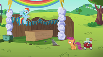 "Rainbow Dash ""where have you been?"" S6E14"