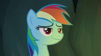 Rainbow Dash smirking like Flash Magnus S7E16