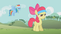 S01E12 Rainbow Dash rozpoczyna trening Apple Bloom