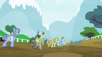 Several ponies walking S4E20