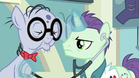 A doctor using his stethoscope on Mr. Waddle S6E4