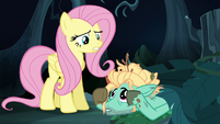 """Fluttershy """"you're smart and talented"""" S6E11"""