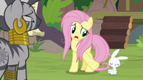 """Fluttershy """"you mean me and Angel?"""" S9E18"""