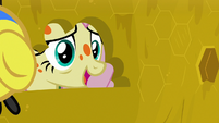Fluttershy asking the flash bees for honey S7E20